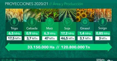 Aseguran que se espera una menor cosecha para la nueva campaña que alcanzaría las 121 millones de toneladas