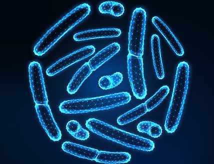 Destacan los múltiples beneficios de los probióticos para la salud